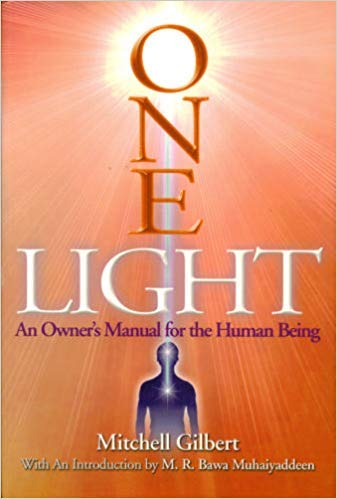 9780977126705: One Light: An Owner's Manual for Human Being