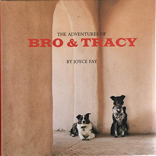 9780977214501: The Adventures of Bro and Tracy
