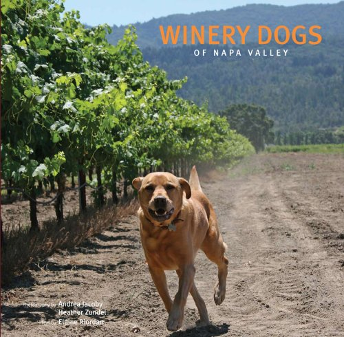 9780977304103: Winery Dogs of Napa Valley