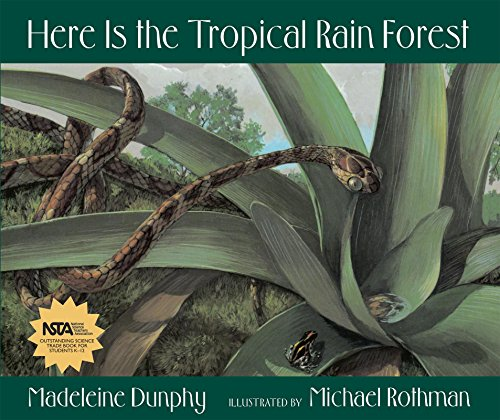 9780977379514: Here Is the Tropical Rain Forest (Web of Life)