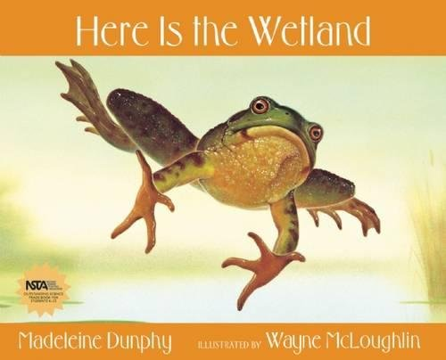 9780977379583: Here Is the Wetland (Web of Life)
