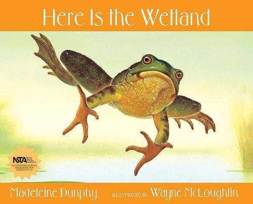 9780977379590: Here Is the Wetland (Web of Life)