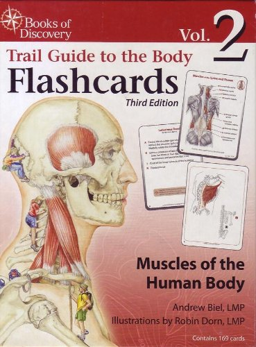 9780977700615: Trail Guide to the Body Flashcards Volume 2: Muscles of the Human Body