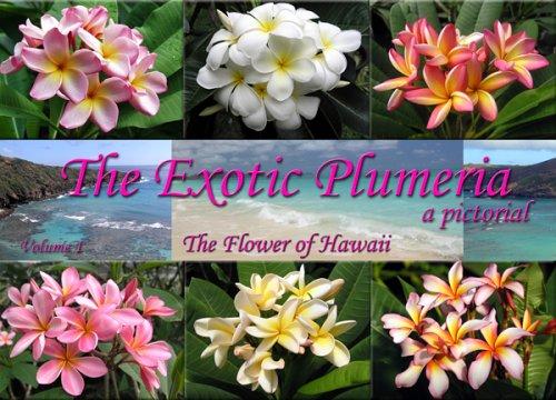 9780977755004: The Exotic Plumeria, a pictorial, Volume 1