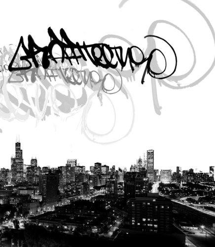 Graffitecture: Chicago Graffiti Artists Attack Photographic Spaces