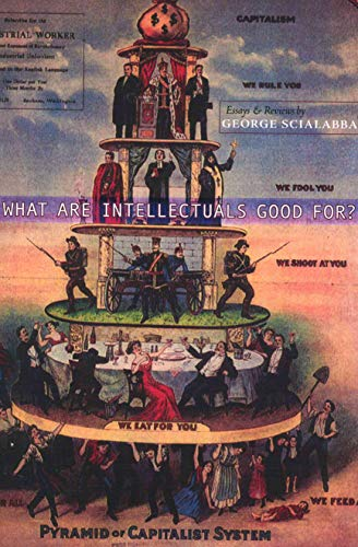 9780978515669: What Are Intellectuals Good For?