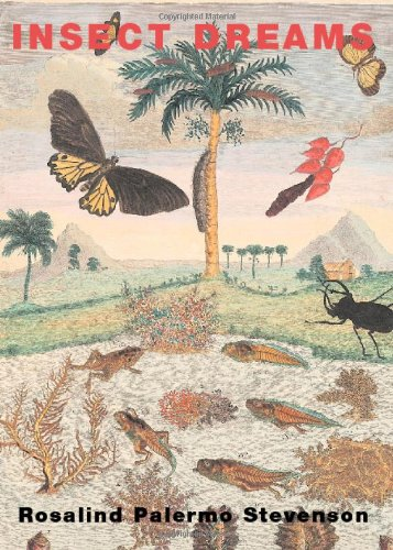 Insect Dreams: Rosalind Palermo Stevenson