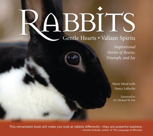 9780978622602: Rabbits: Gentle Hearts Valiant Spirits: Inspirational Stories of Rescue, Triumph, and Joy