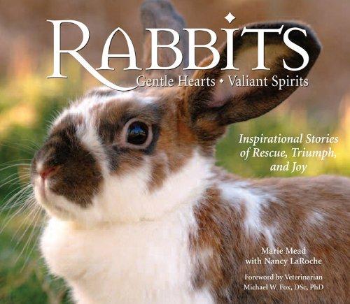 9780978622619: Rabbits: Gentle Hearts, Valiant Spirits
