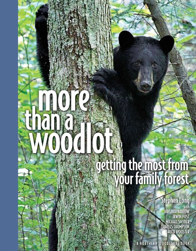 9780978659943: More Than a Woodlot Getting the Most from Your Family Forest