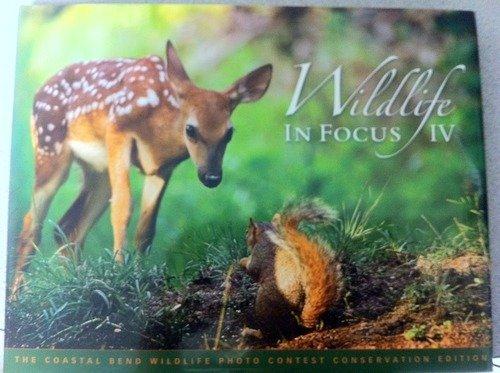 9780978709914: Wildlife in Focus IV (Conservation Edition)