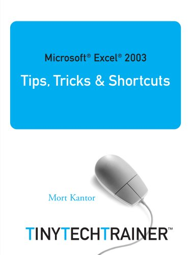 9780978751036: Microsoft Excel 2003 Tips, Tricks & Shortcuts