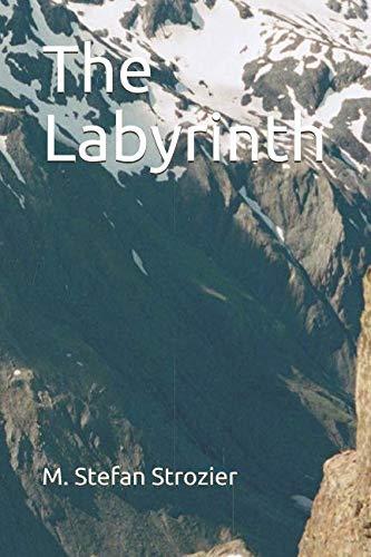 9780978808662: The Labyrinth
