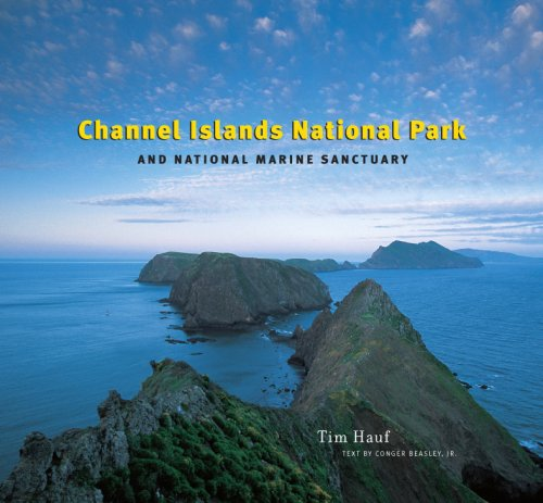Channel Islands National Park and National Marine Sanctuary: Tim Hauf - Photographer; Conger ...