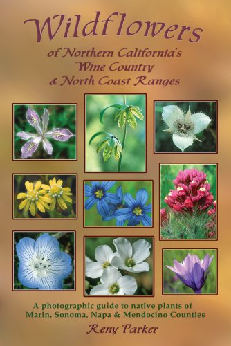 9780979043000: Wildflowers of Northern California's Wine Country & North Coast Ranges