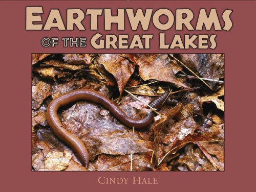 9780979200618: EARTHWORMS of the Great Lakes