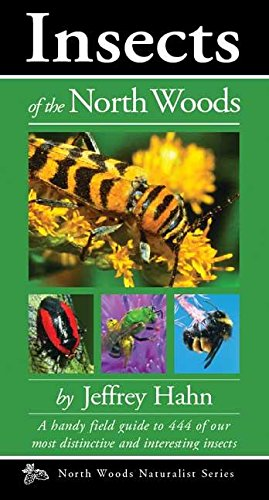 9780979200649: Insects of the North Woods (Naturalist Series)