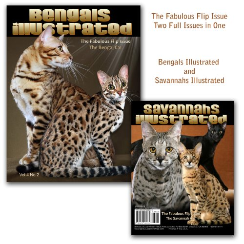 9780979280764: Bengals Illustrated - Bengal Cats and Savannahs Illustrated - Savannah Cats