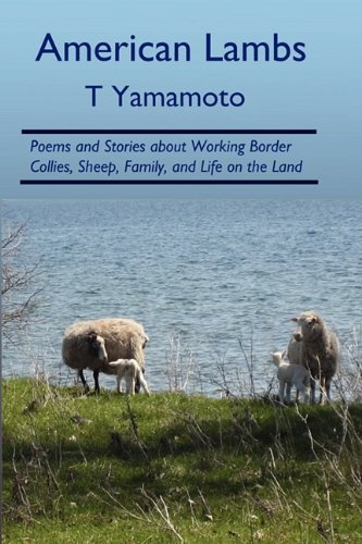9780979469053: American Lambs: Poems and Stories about Working Border Collies, Sheep, Family,