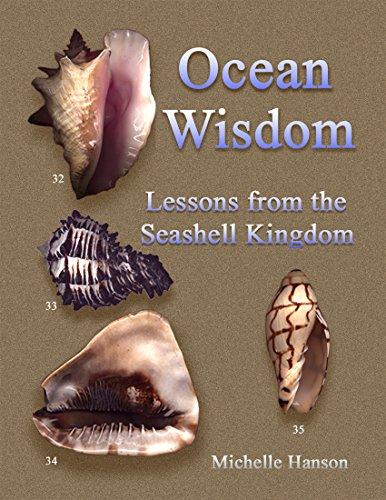 Ocean Wisdom: Lessons from the Seashell Kingdom: Michelle Hanson