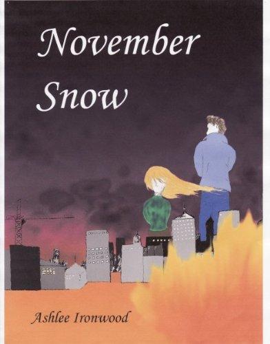 9780979556517: November Snow