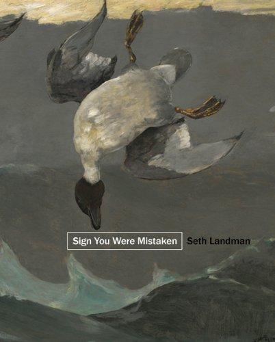 Sign You Were Mistaken: Landman, Seth
