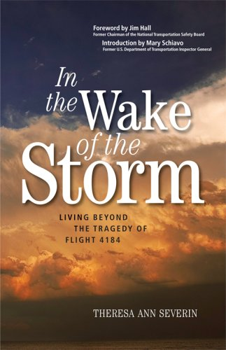 9780979606205: In the Wake of the Storm: Living Beyond the Tragedy of Flight 4184