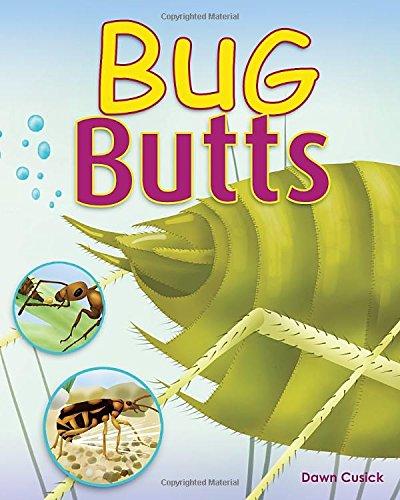 Bug Butts: Cusick, Dawn