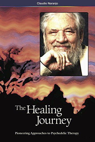 9780979862281: The Healing Journey (Pioneering Approaches to Psychedelic Therapy)