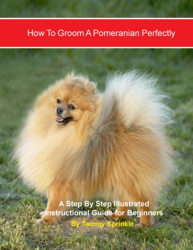 9780979904615: How to Groom a Pomeranian Perfectly: A Step By Step Illustrated Instructional Guide for Beginners
