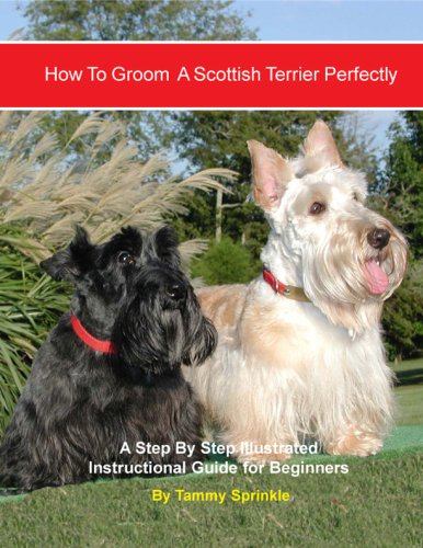 9780979904653: How to Groom A Scottish Terrier Perfectly: An Illustrated Instructional Guide for Beginners