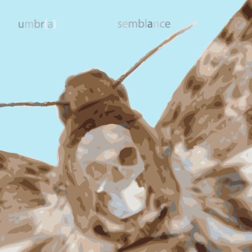 9780979953903: Umbr(a): Semblance