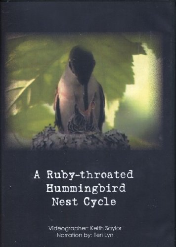 9780979968716: A Ruby-throated Hummingbird Nest Cycle