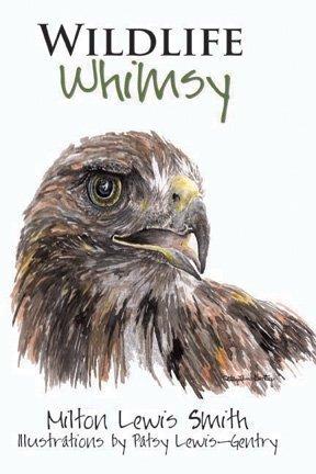 9780979983436: Wildlife Whimsy