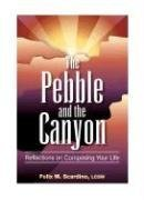 9780980006155: The Pebble and the Canyon