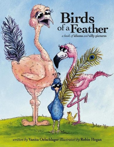 9780980016284: Birds of a Feather: A Book of Idioms and Silly Pictures