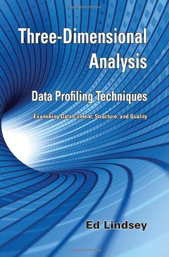 9780980083309: Three-Dimensional Analysis - Data Profiling Techniques