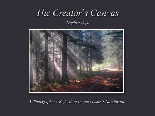 The Creator's Canvas: Stephen Payne