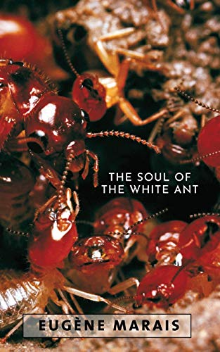 9780980297652: The Soul of the White Ant