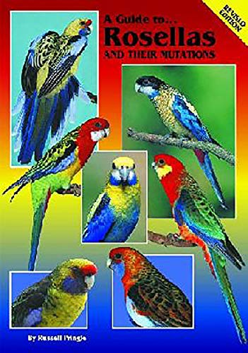 A Guide to Rosellas and Their Mutations (Paperback): Russell Pringle