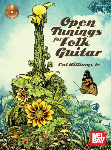 9780980750690: Open Tunings for Folk Guitar