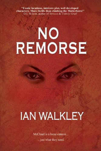 9780980806625: No Remorse