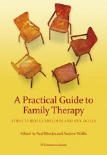 9780980864939: A Practical Guide to Family Therapy: Structured Guidelines and Key Skills