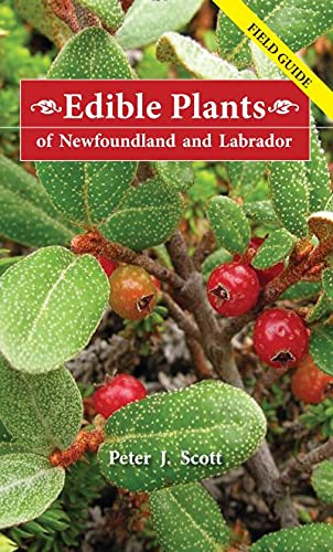 9780980914498: Edible Plants of Newfoundland and Labrador: Field Guide