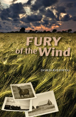 9780981073538: Fury of the Wind