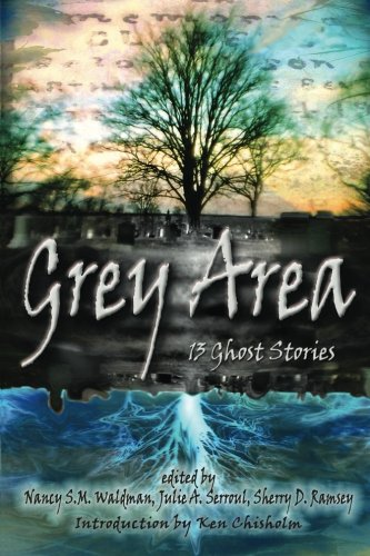 9780981102580: Grey Area: 13 Ghost Stories