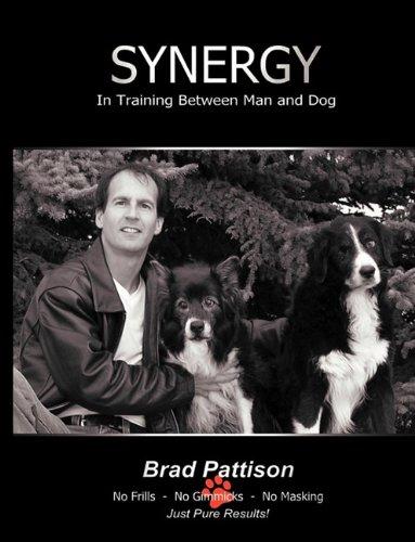 Synergy: Pattison, Brad