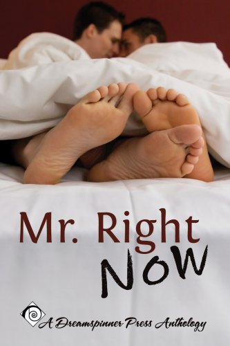 9780981508429: Mr. Right Now