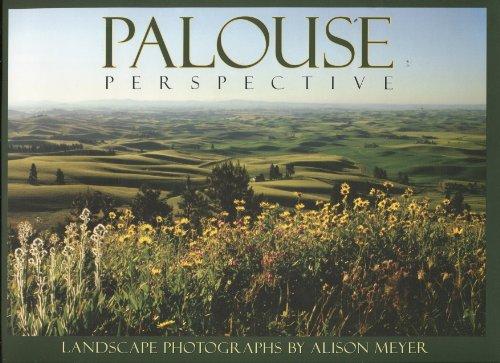 9780981816708: Palouse Perspective: Landscapte Photography by Alison Meyer