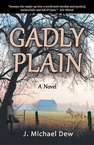 9780981892993: Gadly Plain: A Novel